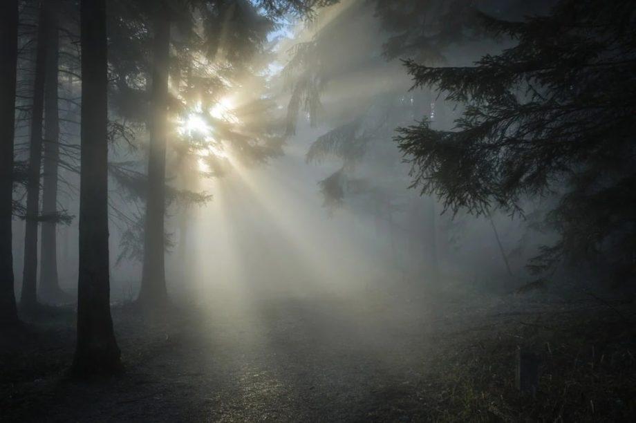 Les bienfaits de la luminothérapie sur la santé